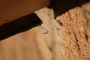 Drop Drip, Charlotte Gunn, Nov 2009
